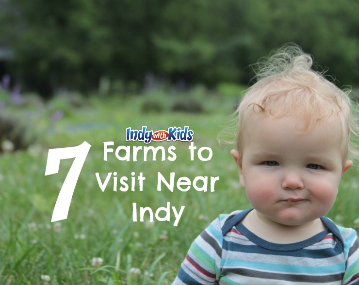 Seven Farms to Visit Near Indy