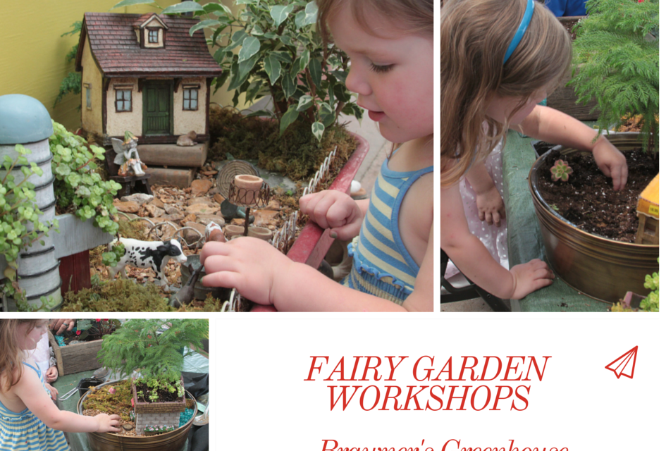 Fairy Garden Store & Workshops | Brawner's Greenhouse