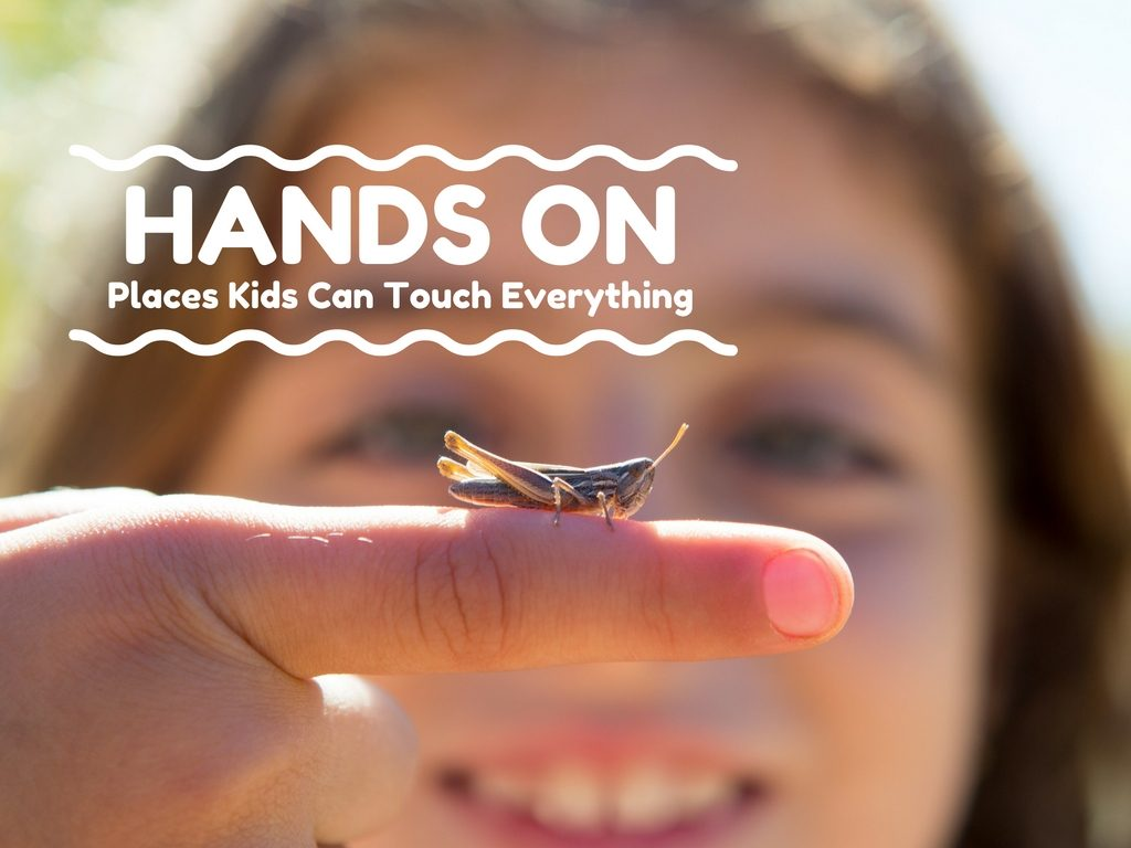 hands-on places kids can touch stuff indianapolis indy kids child moms