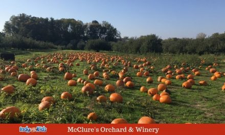 McClure's Apple Orchard & Winery | Free Admission