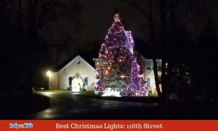 Best Christmas Lights in Fishers: 116th Street