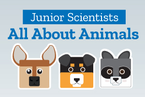 Junior Scientists: All About Animals | Indy Public Libraries
